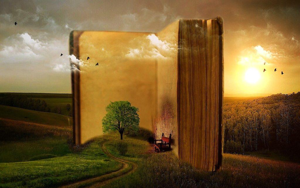 Image d'illustration présentant un livre géant ouvert, posé en position verticale dans un paysage de nature. Un chemin tracé dans l'herbe au premier plan mène à un arbre planté devant l'une des pages encore non rédigée du livre. Un fauteuil est adossé à la page de droite, les pieds dans l'herbe. A l'arrière plan le soleil voilé de nuage légers s'abaisse vers l'horizon marqué par une forêt de feuillus. Oiseaux et nuages passent indifféremment devant les pages du livre et derrière celui-ci.