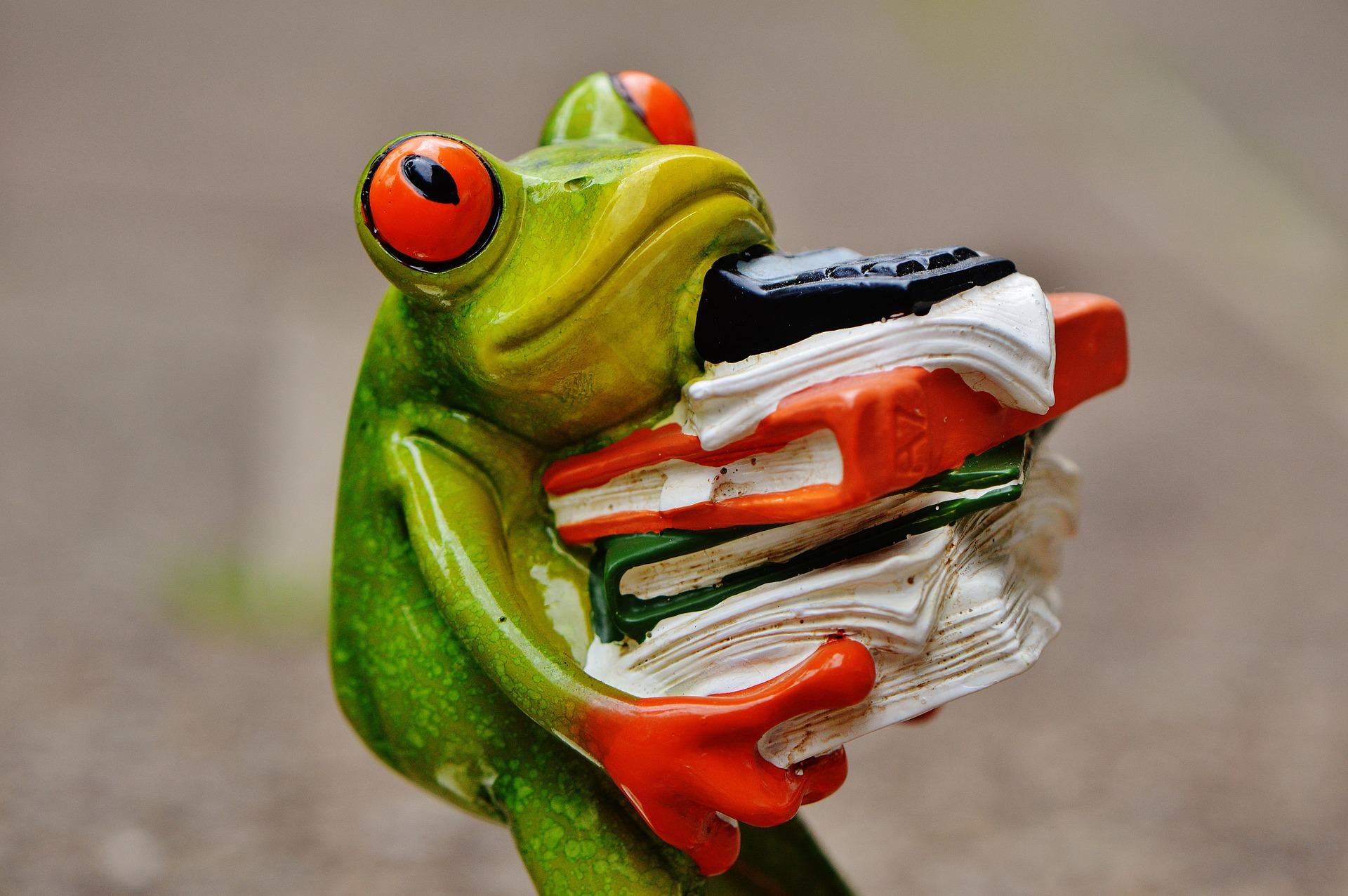 Image d'illustration présentant une grenouille portant une pile de livre au sommet de laquelle se trouve une calculatrice.